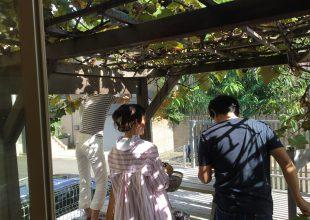 今年もブドウの収穫祭を行いました。